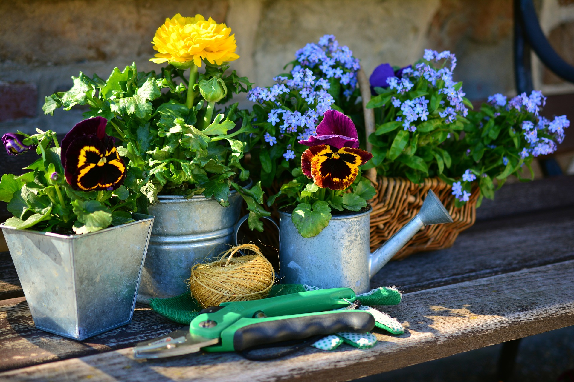 tavaszi kerti munkák